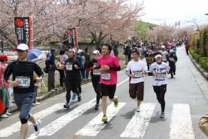 Charity Marathon 2013